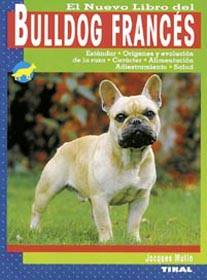 bulldog-frances.jpg